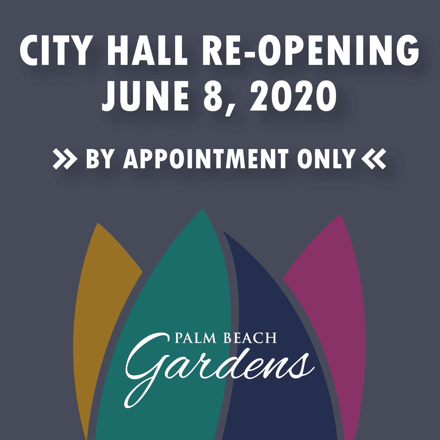 City Hall Re-opening