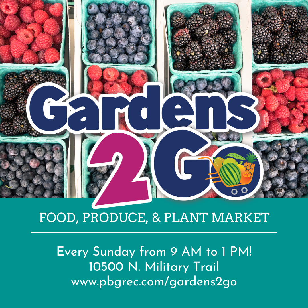 Gardens 2 Go food, produce, and plant market. Every Sunday, 9am to 1pm at 10500 N. Military Trail.