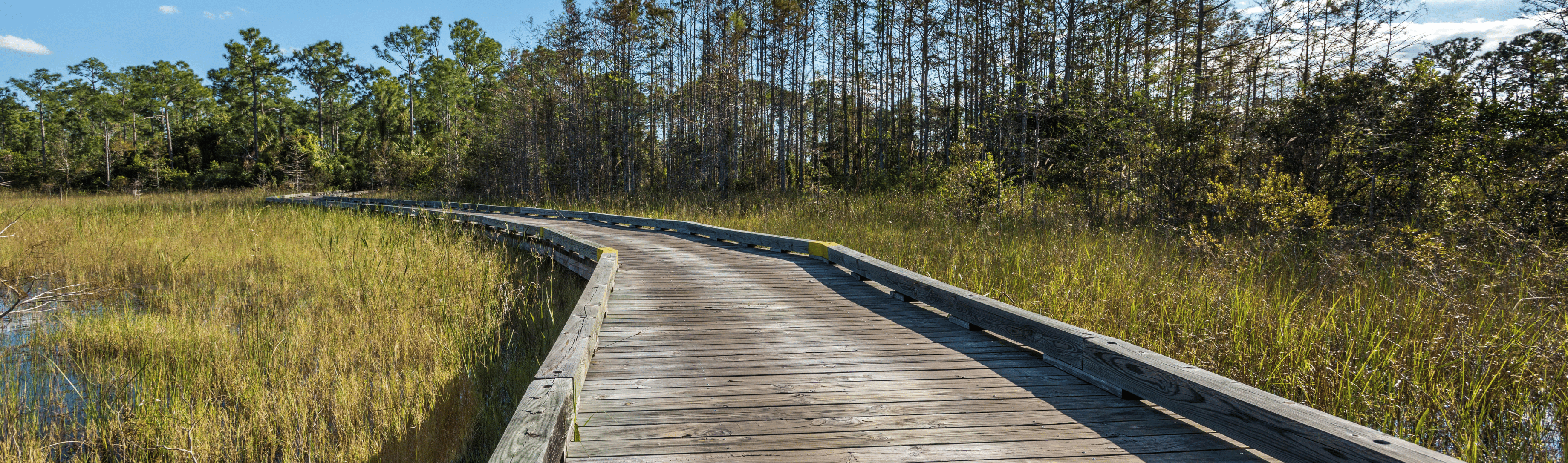 Boardwalk through Course