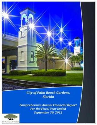 2012 Comprehensive Annual Financial Report