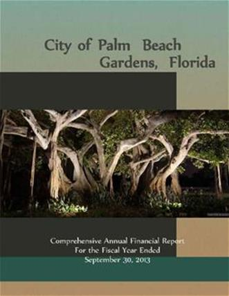 2013 Comprehensive Annual Financial Report